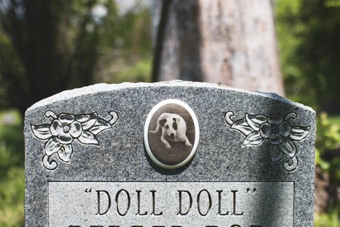 columbus, ohio, pet cemetery, graveyard